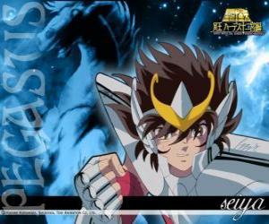puzzel Pegasus Seiya