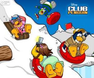 puzzel Pinguïns rodelen naar beneden in een slee