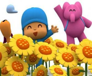 puzzel Pocoyo en zijn vrienden in een veld met zonnebloemen