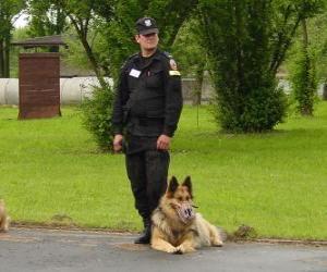 puzzel Politieagent met zijn politiehond