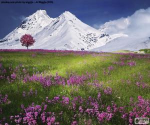 puzzel Prachtige landschap van de Alpen