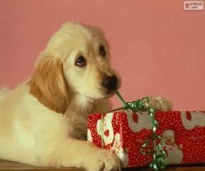 puzzel Puppy speelt met een cadeau lint
