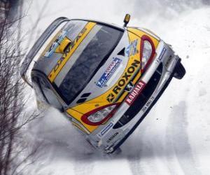 puzzel Rally auto op de sneeuw