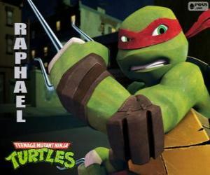 puzzel Raphael, de meer agressieve ninja turtle met zijn armen in de hand, een paar van Sai, een driesporenbeleid dolk
