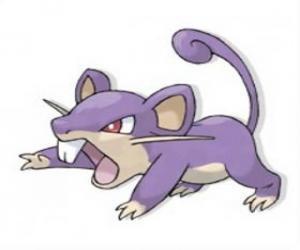 puzzel Rattata - Pokemon normale type, snelle aanvallende rat