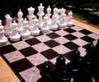 Schaakbord met geplaatste alle stukken om te beginnen met het spel