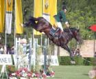 Paardensport - Paard en ruiter in de jumping oefening