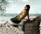Sirene zittend op een rots aan zee