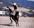 Rodeo - Rider in het zadel bronc concurrentie, rijdend op een wild paard