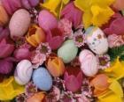 Paashazen en eieren