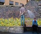 Tuinman neigt planten, water geven
