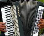 Een accordeon