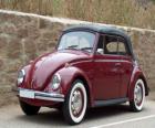 Klassieke auto - Volkswagen Kever