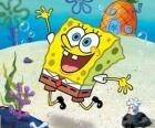 SpongeBob is een zee-spons