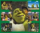 Verschillende foto's van Shrek