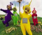 De Teletubbies: Laa-Laa, Tinky Winky, Po en Dipsy