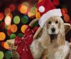 Puppy met Santa Claus hoed in een mandje