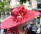 Pamela rood, zijn zeer breedgerande hoeden gebruikt door vrouwen