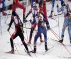 De biatlon in een wintersport van het combineren van cross-country skiën met een schietwedstrijd.
