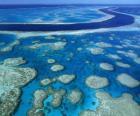 Het Great Barrier Reef, koraalriffen over de hele wereld grootste. Australië.