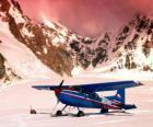 Cessna 185 in de sneeuw