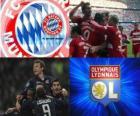 UEFA Champions League halve finale 2009-10, FC Bayern München - Olympique Lyonnais