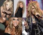 Kesha is een Amerikaans zanger en songwriter.