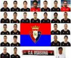Team van CA Osasuna 2010-11
