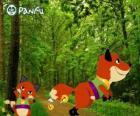 Pokopet Fox uit Panfu