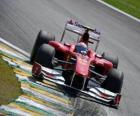 Fernando Alonso - Ferrari - Interlagos 2010