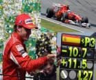 Fernando Alonso - Ferrari-GP van Brazilië 2010 (3e plaats)