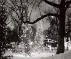 Kerstmis in het Park