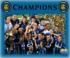 Internazionale Wereldkampioen 2010 FIFA