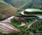 Landschap van het Chinese platteland
