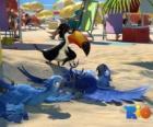 Rio de film met drie van haar protagonisten: de ara's Blu, Jewel en de toekan Rafael op het strand