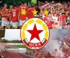 CSKA Sofia, de Bulgaarse voetbalclub