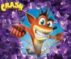 Crash Bandicoot, hoofdpersoon van de video game Crash Bandicoot