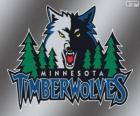 Minnesota Timberwolves logo, NBA-team. Northwest Division, Western Conference