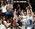 Dallas Mavericks 2011 NBA Kampioen