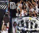 Copa Libertadores 2011 kampioen Santos FC