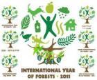 2011 Internationaal Jaar van de Bossen