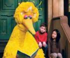 Big Bird het lezen van een prentenboek