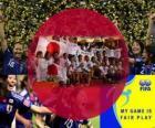 2011 FIFA Fair Play Award voor de Japan Football Association