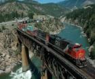 Trein van goederen die over een brug