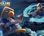 Ninja pinguins, personage uit de beroemde Club Penguin