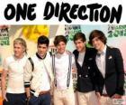 One Direction is een boy band britanica-irlandesa
