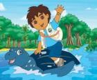 Diego op zee op het schild van een zeeschildpad