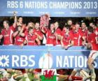 Welsh kampioen de 2013 Six Nations