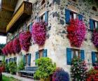 Huis in het voorjaar met bloemen in de ramen