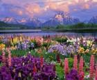 Landschap in het voorjaar van